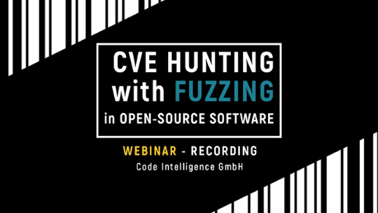 CVE Hunting with Fuzzing